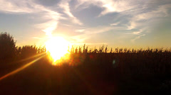 Driving along farm country roads with setting sun Stock Footage