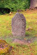 Runestone in a meadow Stock Photos
