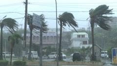Strong Wind Blows As Hurricane Approaches City - stock footage