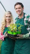 Happy couple showing carton of small plants - stock photo