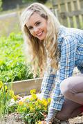 Blonde woman planting yellow flowers smiling at camera - stock photo