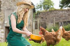 Young woman feeding her chickens - stock photo