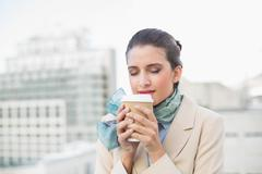 Peaceful smart brown haired businesswoman enjoying coffee Stock Photos