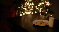 Santa Milk and cookies Stock Footage