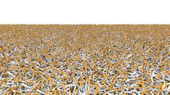 Field of cigarettes Stock Photos