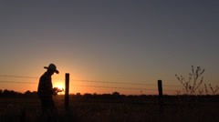Cowboy horse rancher, lens flare Stock Footage