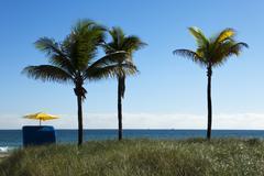 Tropical solitude with umbrella Stock Photos