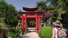 Monte Palace Tropical Garden (Japanese garden), Monte, Madeira Stock Footage
