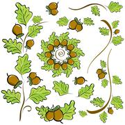 Design elements of oak leaves and acorns Stock Illustration