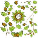 Stock Illustration of design elements of oak leaves and acorns