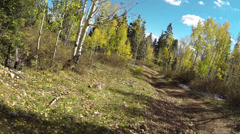 Mountain Autumn forest rough ATV trail POV HD 0141 Stock Footage