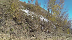 Mountain early winter autumn colors mud and snow POV HD 0135 Stock Footage