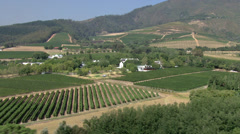 Wine farms in The Cape Stock Footage