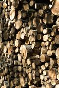 A stack of firewood, close-up, full frame Stock Photos
