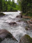 altai river - stock photo