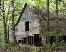 Ruins of a wooden house at British Columbia, Canada Stock Photos