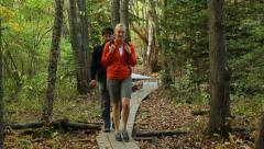 Hiking on a wooden footpath in the woods, medium shot. Stock Footage