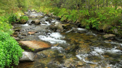 Beautiful river detail on the Pirineus (Spain) Stock Footage