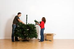 christmas: adding more branches to tree - stock photo