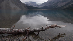 Bow Lake and Bow Glacier with Branch on Shore - stock footage
