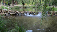 Stock Video Footage of River flow in natural resort/spa 1