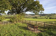Yorkshire wolds bench Stock Photos