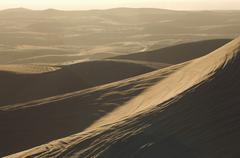 ATV Tracks On Sand Stock Photos