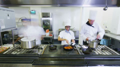 Time lapse of a busy team of chefs preparing food in a commercial kitchen - stock footage
