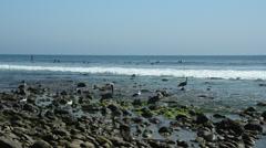 California Coast Line Stock Footage