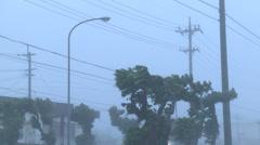 Violent Hurricane Eyewall Winds Lash City Stock Footage