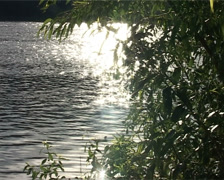 Sunny day on the river Stock Footage