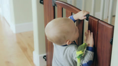A toddler with a bird in his home Stock Footage