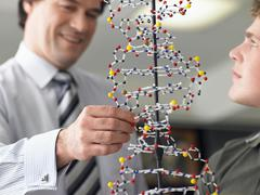 Boy With Teacher Examining DNA Model Stock Photos