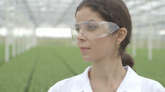 CU Scientist wearing safety glasses in a greenhouse Stock Footage