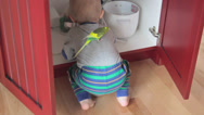 Stock Video Footage of little boy playing in kitchen cupboard