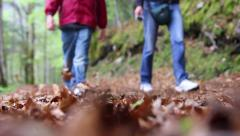 Child and adult go on a dry leaves road Stock Footage