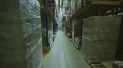 Timelapse of People working in logistics warehouse Stock Footage