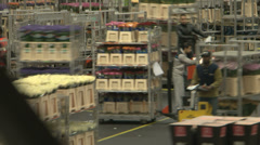 Flower market auction distribution centre Stock Footage