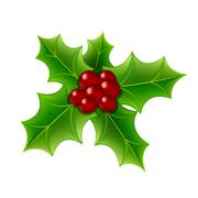 Christmas Holly Berry and Leaves Stock Illustration