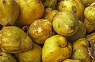 Stock Photo of quinces