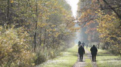 People Slowly Walking in Autumn Forest 2 Stock Footage