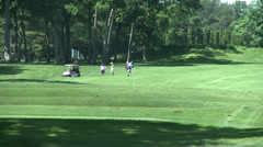 Golfers walking near cart on course Stock Footage