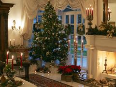 Germany, Hesse, festive Christmas living room with Christmas tree and fireplace Stock Photos