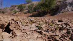 Dry Desert Land Ground View Establishing Shot Stock Footage