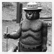 Smokey the Bear Stock Photos