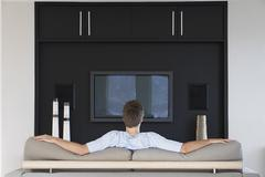 Rear View Of Man Watching Television - stock photo