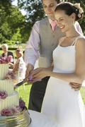 Bride And Groom Cutting Wedding Cake Stock Photos
