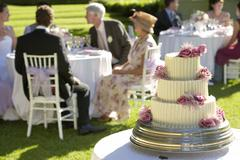 Weeding Cake With Guests In Background Stock Photos