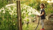 Stock Video Footage of Girl watering garden