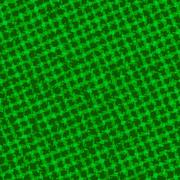 Square grass texture Stock Illustration